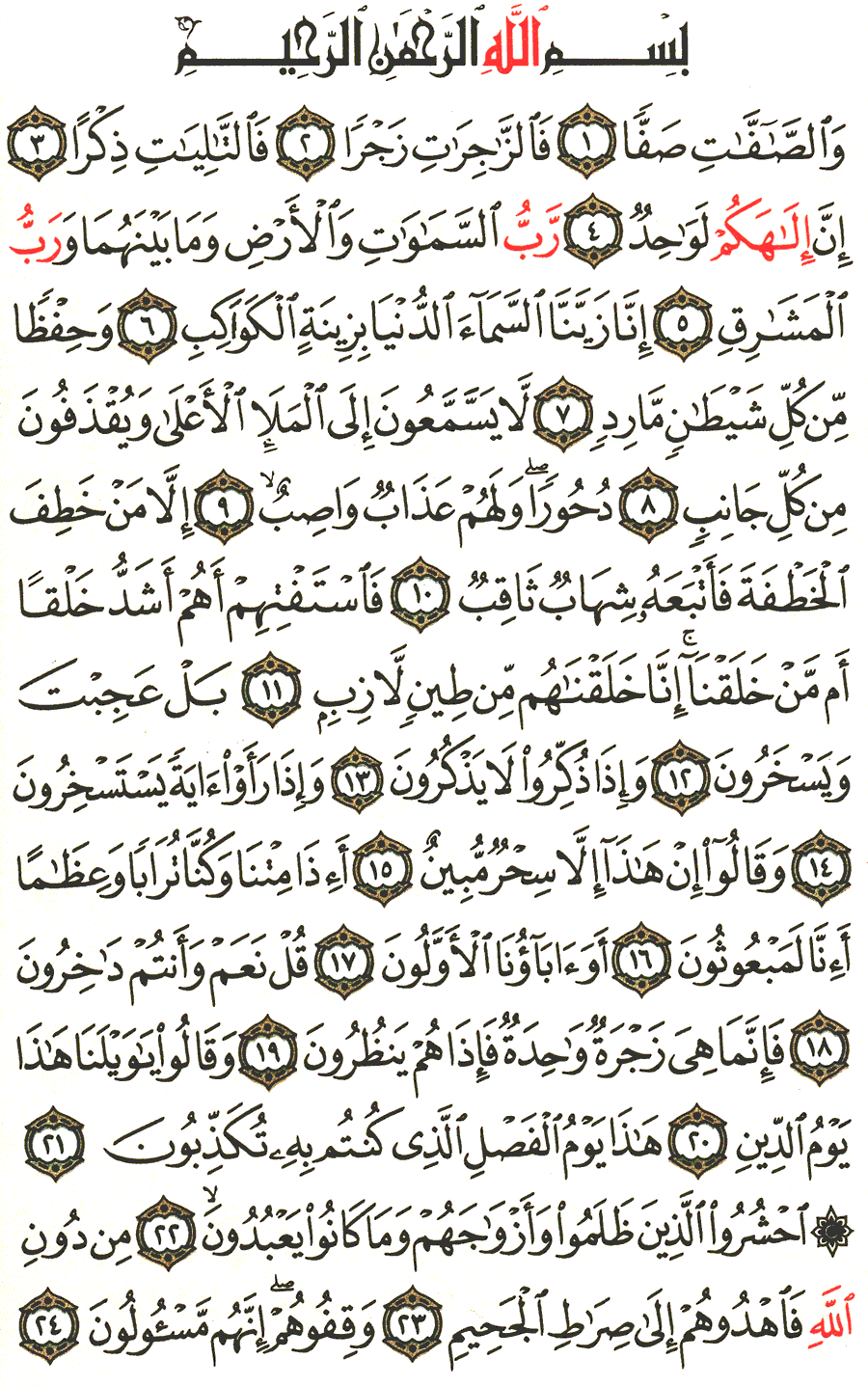Page No 446  The Noble Quran