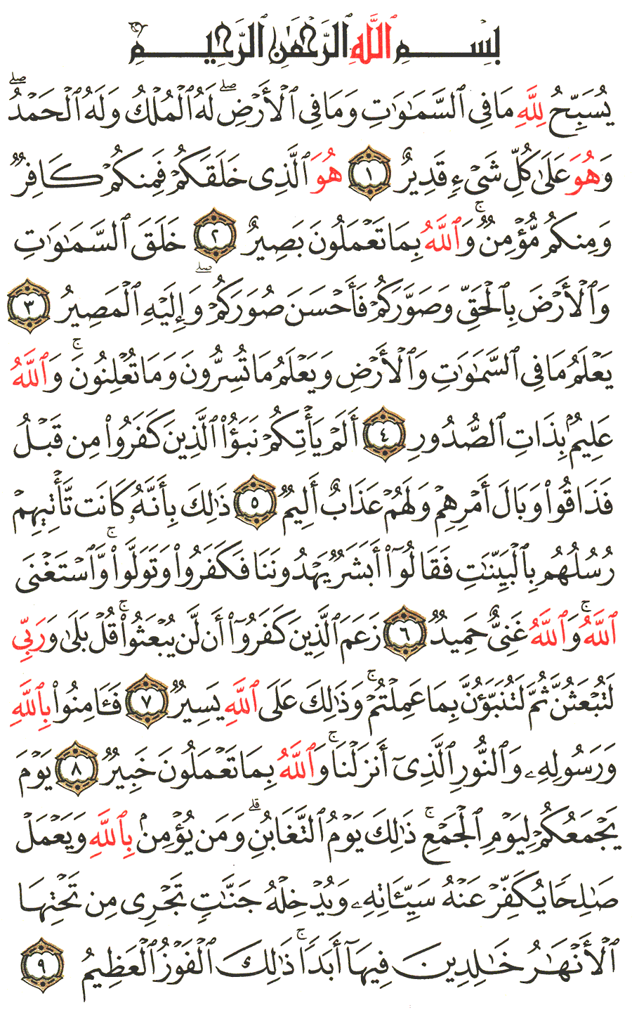 الصفحة رقم 556 من القرآن الكريم مكتوبة من المصحف