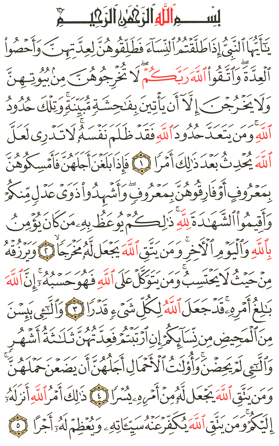 الصفحة رقم 558 من القرآن الكريم مكتوبة من المصحف